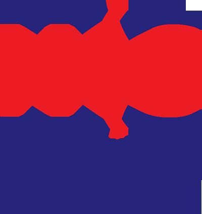 Logo NES